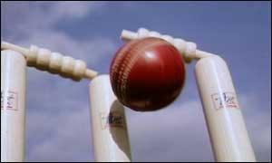 wicket_cricket.jpg