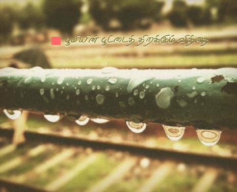 rain-3